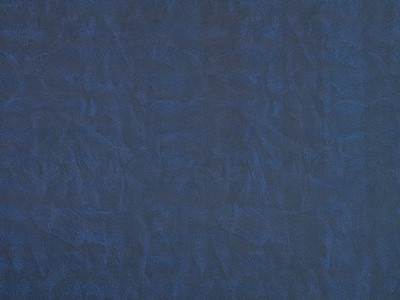 LL Leguan Blue Sheet