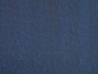 SG Leguan Blue Sheet