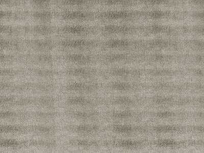 SG Leguan Silver Sheet
