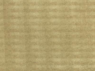 SG Leguan Gold sheet